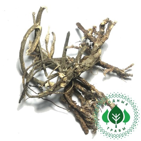 Астрагал шерстистоцветковый корень