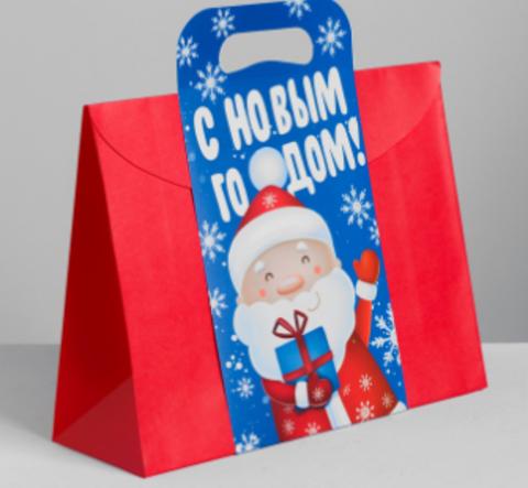 060-0005 Пакет подарочный «С Новым годом, друзья!», 30 × 23 × 10 см