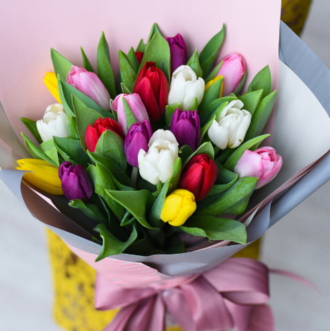 Тюльпаны микс от 9шт