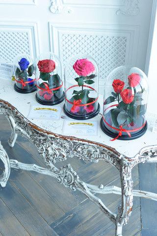 Пакет Легкий Старт в него входит(4 розы+2 премиум коробки wow)+Бонусы для клиентов