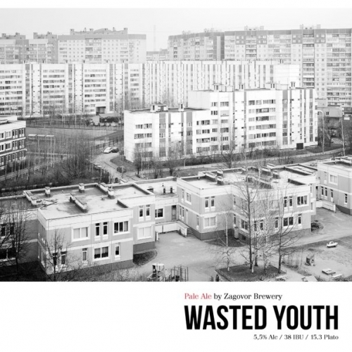 https://static-sl.insales.ru/images/products/1/3200/442231936/Zagovor_Brewery_Wasted_Youth.jpeg