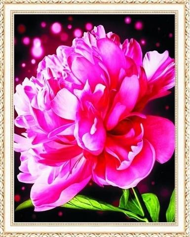 Алмазная Мозаика 40x50 Розовый пион на сверкающем фоне (арт. HWA2108 )