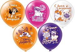 Шар 12'' шелк рис. 2ст. 2цв. С днем рождения! Собачки, 5 дизайнов (25 шт./уп.) БиКей