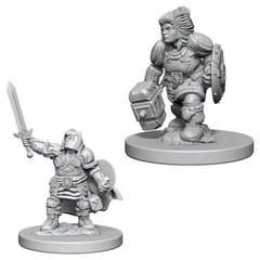Dwarf Female Paladin / Женщины-паладины из расы дварфов