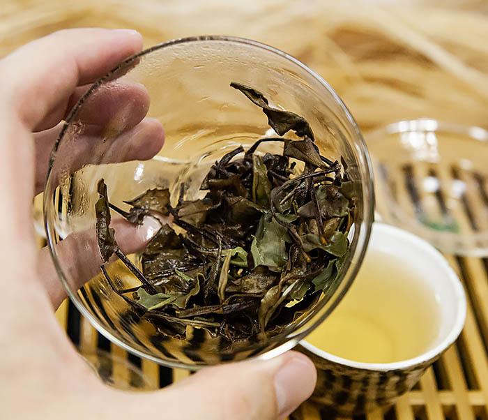 TEA-CH133 Китайский белый чай «Брови долголетия» (Шоу Мэй, 50 гр) фото 15