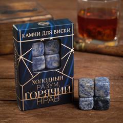 Набор камней для виски «Холодный разум», 4 шт, фото 1