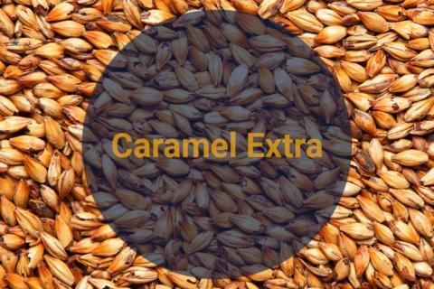 Солод Карамельный Экстра / Caramel Extra, 230-270 EBC, 1 кг