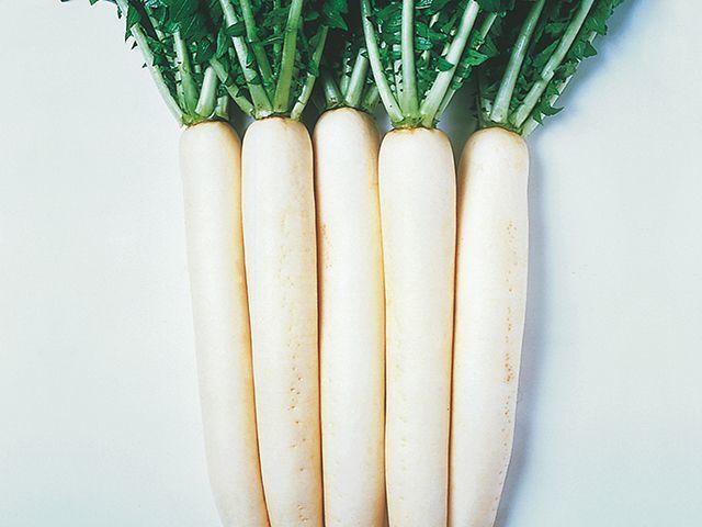 Дайкон Эприл Крос F1 семена дайкона (Takii / Таки) Эприл_Крос_F1_семена_овощей_оптом.jpeg