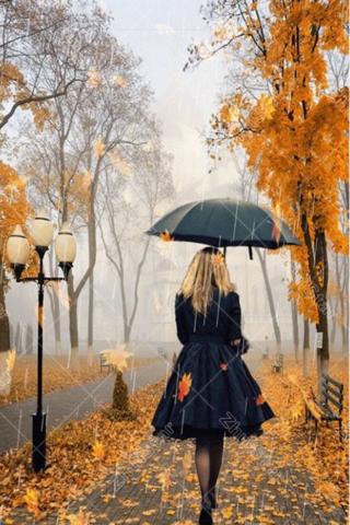 Алмазная Мозаика 30x40 Девушка под зонтиком в осеннем парке (арт. HZS336)