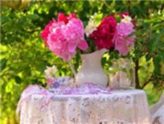 Картина раскраска по номерам 40x50 Розовые летние цветы в вазе