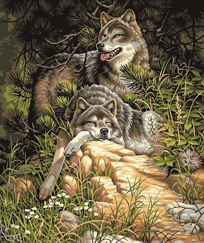 Алмазная Мозаика 40x50 Волки на камнях (арт. TC8470 )