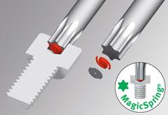 Набор Г-образных ключей Torx®, с фиксацией MagicSpring® 13