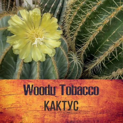 Табак Woodu Кактус 250 г