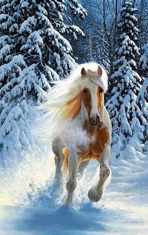 Алмазная Мозаика 5D 40x50 Белый конь бежит по снегу