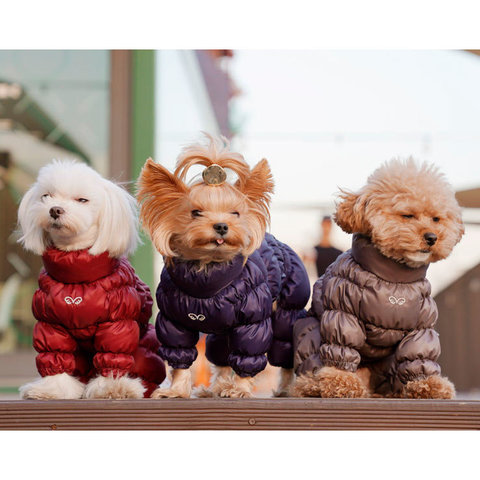 441 PA - Комбинезоны для собак