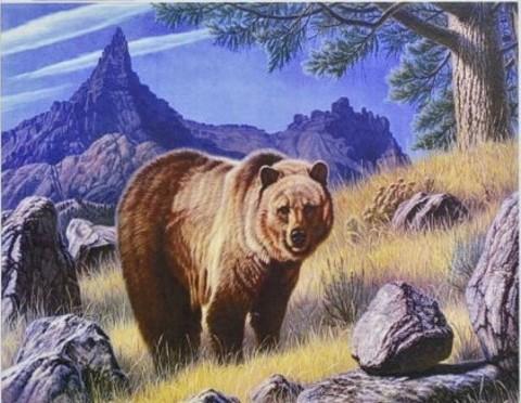 Алмазная Мозаика 40x50 Медведь и горы (арт. FGJ72267)