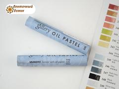 Профессиональная мягкая масляная художественная пастель № 246 Grey (поштучно)
