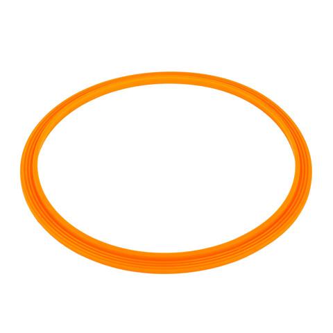Уплотнительное кольцо AquaViva прожектора LED/UL-P100 2021004 / 11893