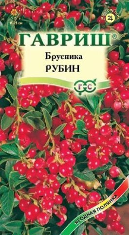 Брусника Рубин 20шт