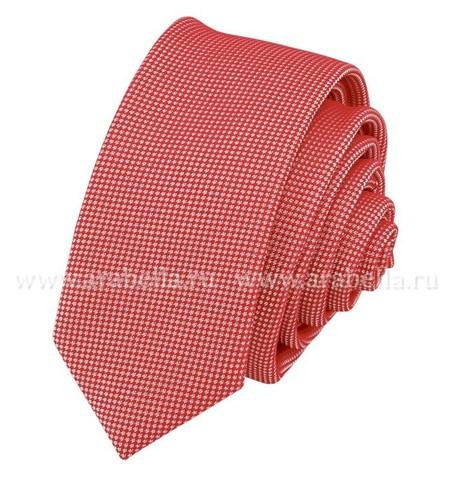 Carpenter-poly 5-красный 302.1.04