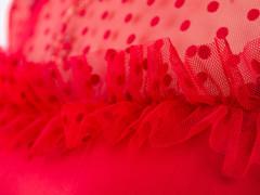 Жанна. Весняна молодіжна блуза. Червоний