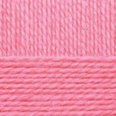 Купить Пряжа Пехорка Перспективная Код цвета 324-Св. Азалия | Интернет-магазин пряжи «Пряха»