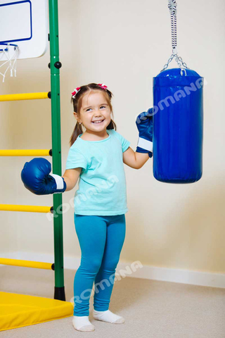 Мешок боксерский ROMANA