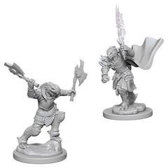 D&D Nolzur's Marvelous Miniatures - Female Dragonborn Fighter