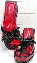 Квадратные шлепки босоножки женские кожаные Derem 042-921-02 Red Black.