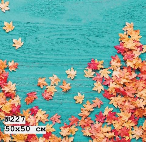 Фотофон виниловый «Осенняя листва» №227