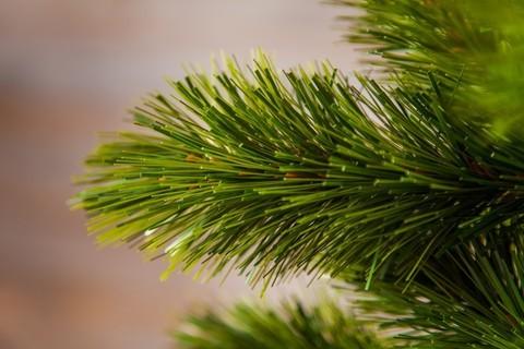 Искусственная елка Триумф Норд 60 см в мешочке зеленая