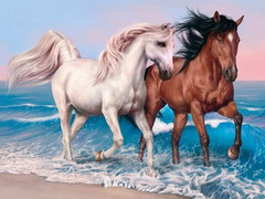 Картина раскраска по номерам 30x40 Лошади бегут вдоль берега