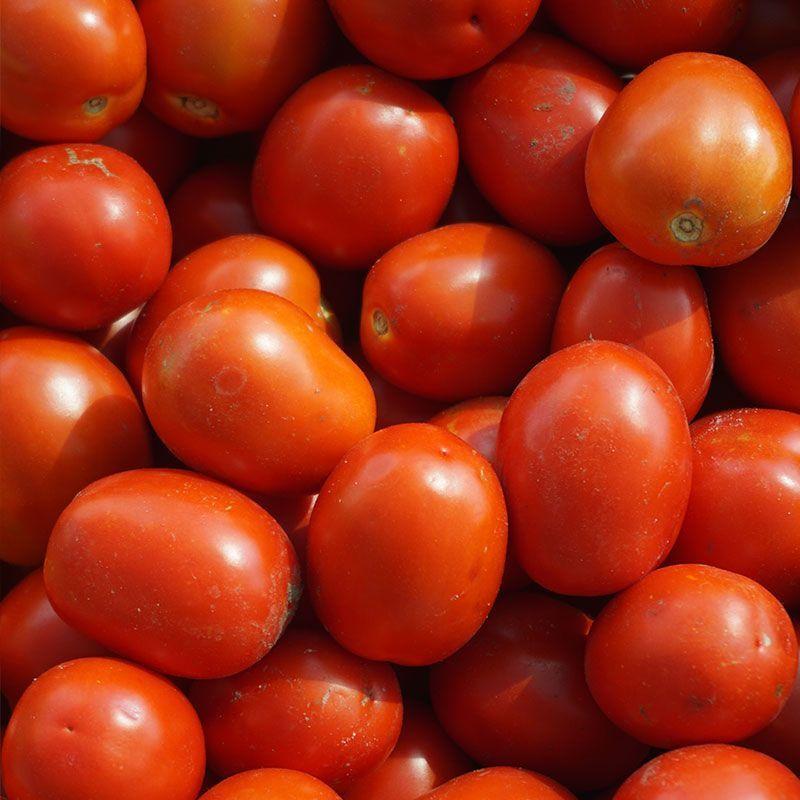Томат Ферст F1 семена томата детерминантного (Seminis / Семинис) ferst-f1-semena-tomata-det-seminis.jpg