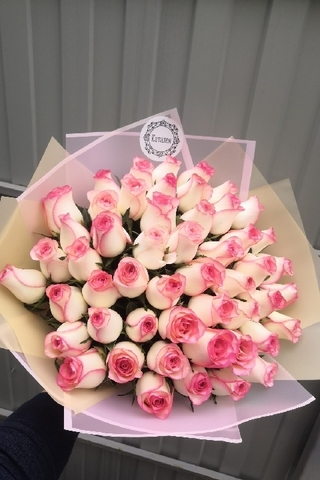 51 роза розовая