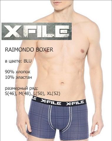 Мужские трусы Raimondo Boxer X-File
