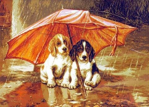 G-909 Под зонтом