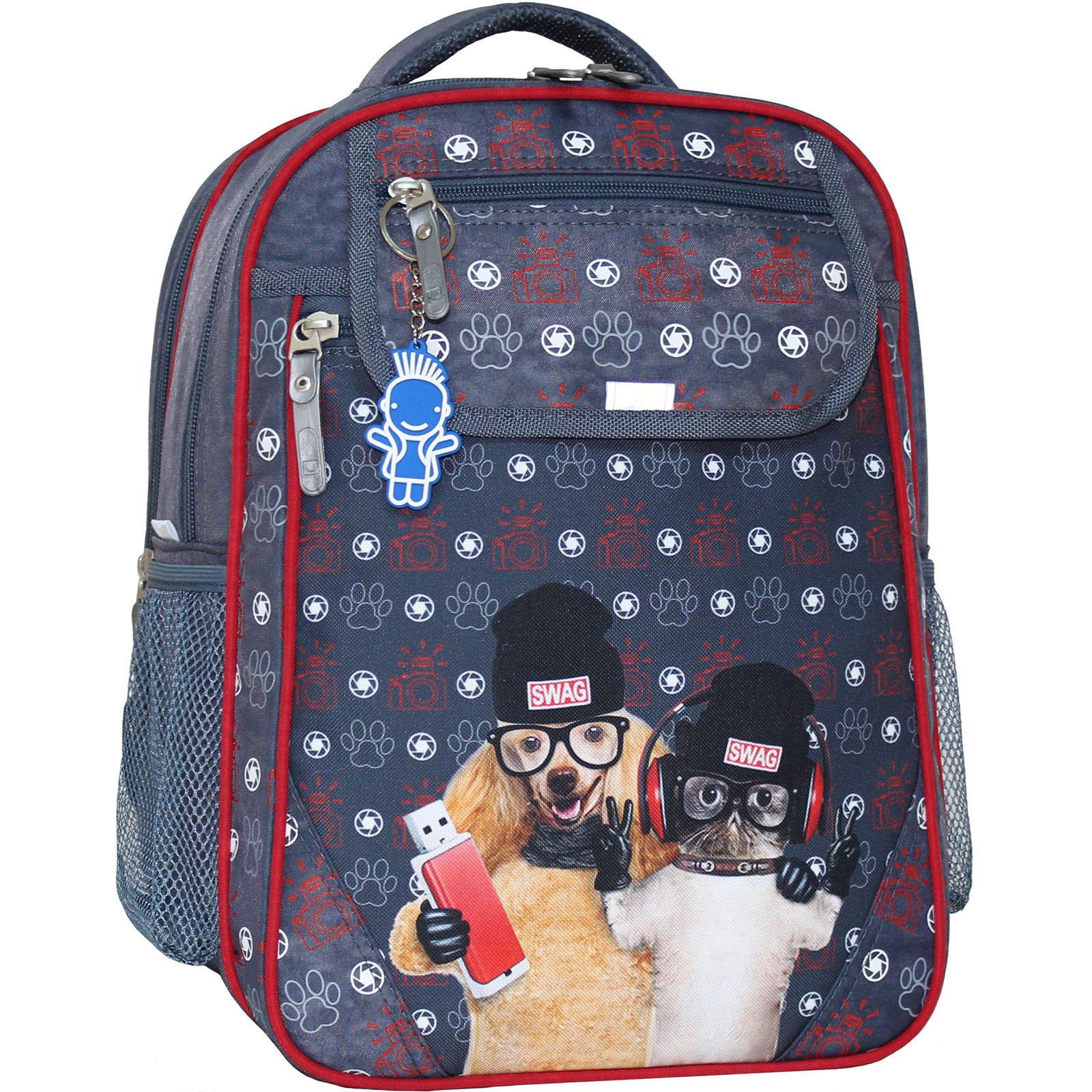 Школьные рюкзаки Рюкзак школьный Bagland Отличник 20 л. 321 сірий 188к (0058070) IMG_5294_188К_.JPG