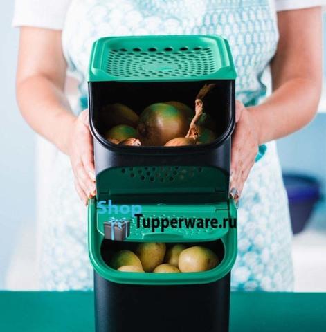 Контейнер Свежесть и Дыхание Tupperware - для хранения лука и картофеля
