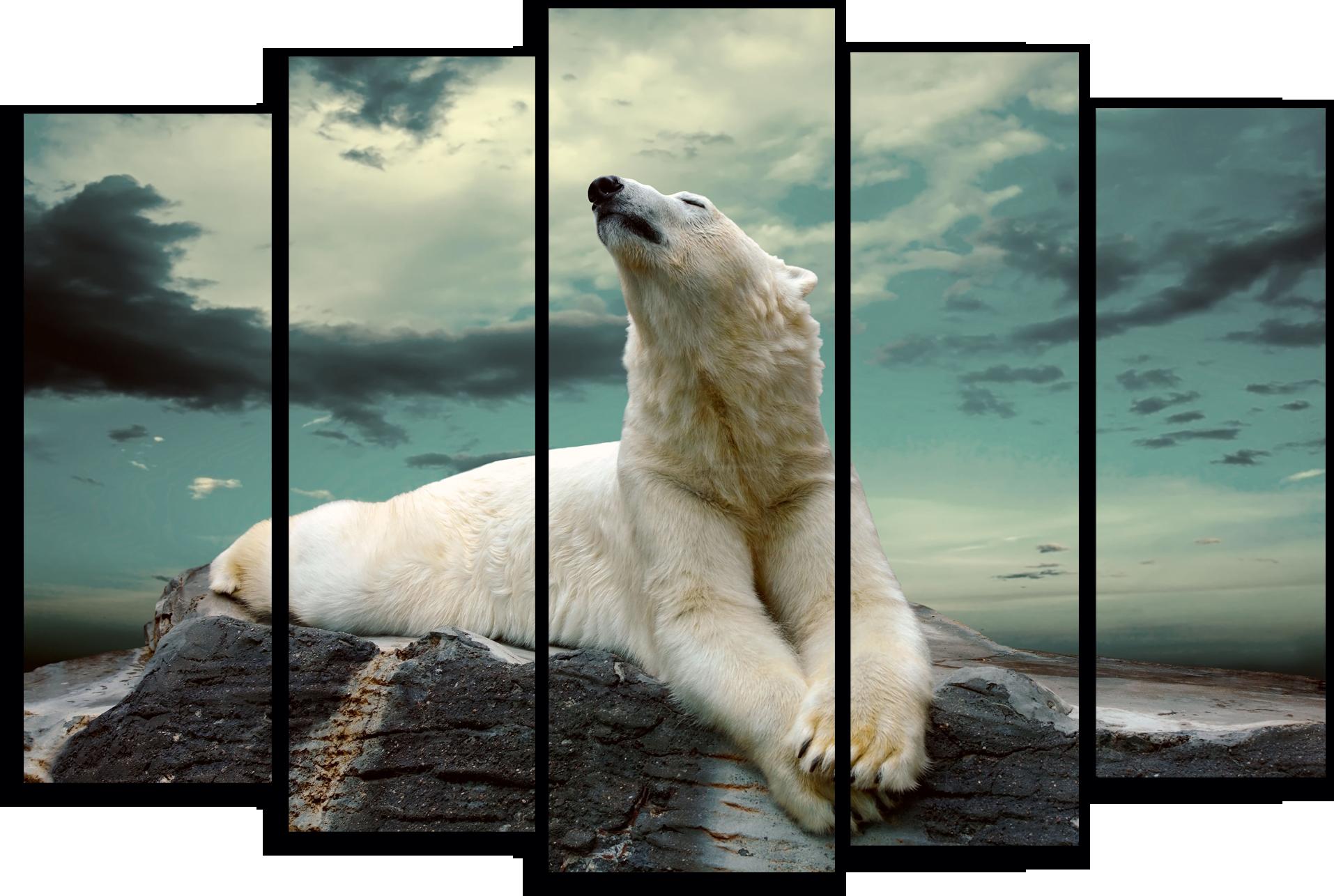 """Животные Модульная картина """"Белый медведь"""" М796__1_.png"""