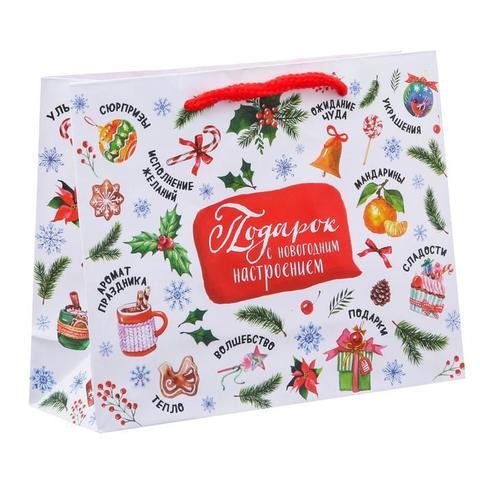 Пакет «Подарок с новогодним настроением», 18×23×8 см