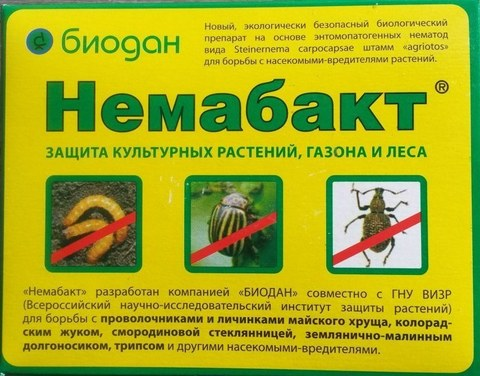 Немабакт