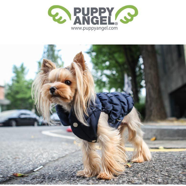 куртка для йорка puppyangel