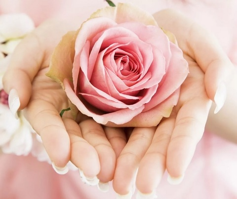 Алмазная Мозаика 30x40 Розовая роза в руках (арт. S3264)