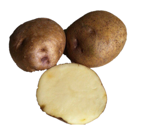 Картофель семенной Синеглазка СЭ 28/55 уп.2кг