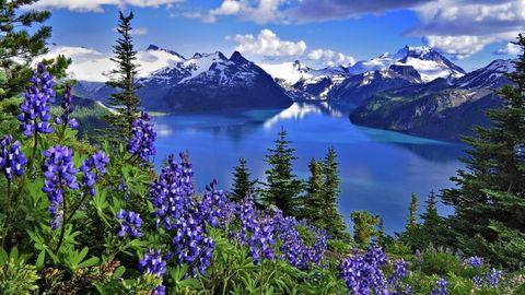 Алмазная Мозаика 5D 40x50 Вид на горное озеро