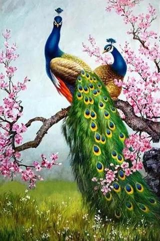 Алмазная Мозаика 30x40 Павлины отдыхают на цветущей ветке дерева (арт. S3267)