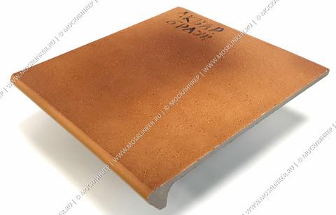 Ceramika Paradyz - Aquarius Brown, 300x330x11, артикул 5246 - Ступень простая с капиносом