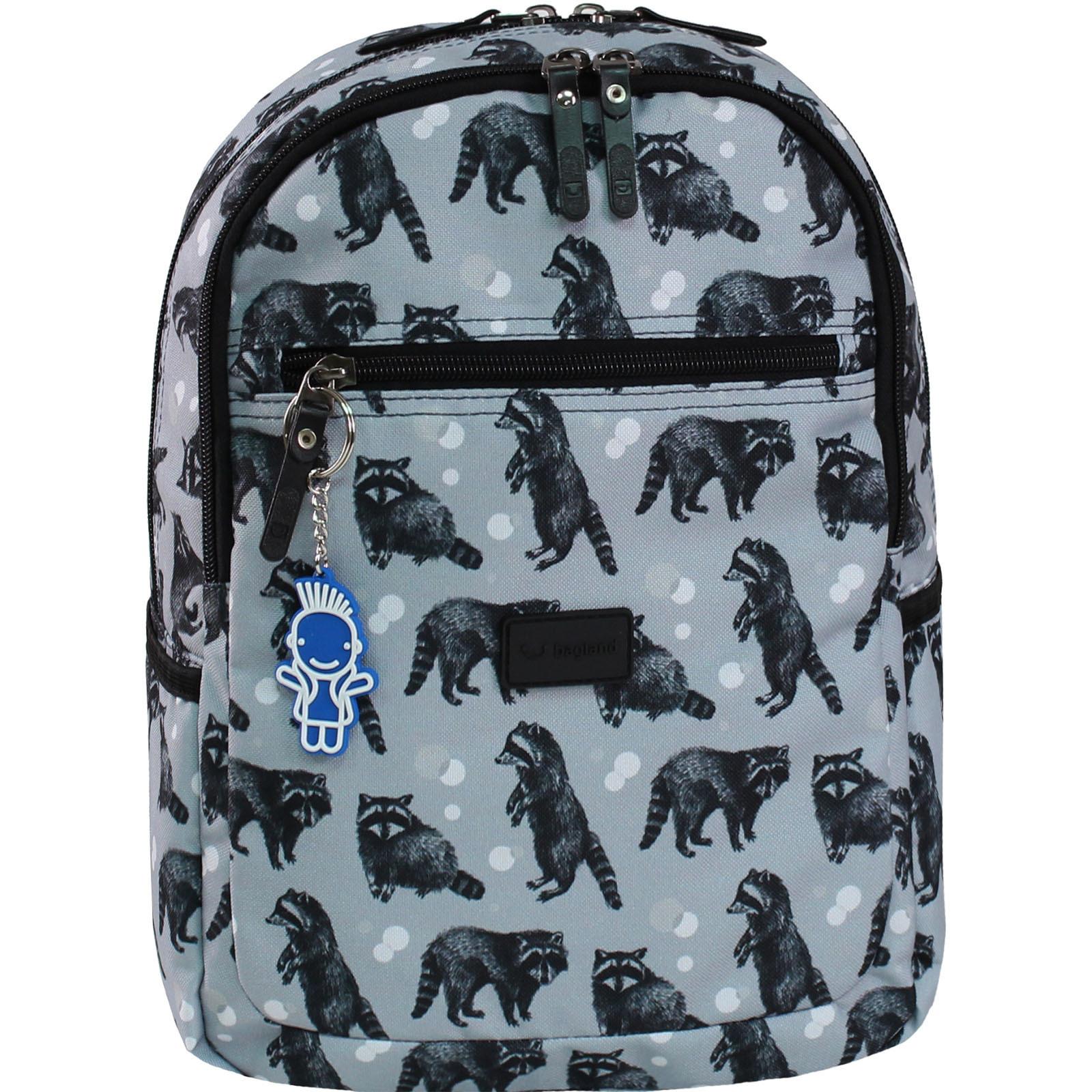 Детские рюкзаки Рюкзак Bagland Young 13 л. сублімація 356 (00510664) IMG_8737_356.JPG