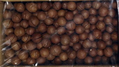 Макадамия в скорлупе крупная 4900 гр