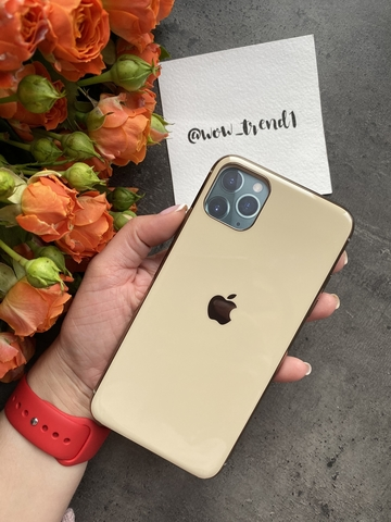 Чехол iPhone 11 Pro Glass Silicone Case Logo /gold/